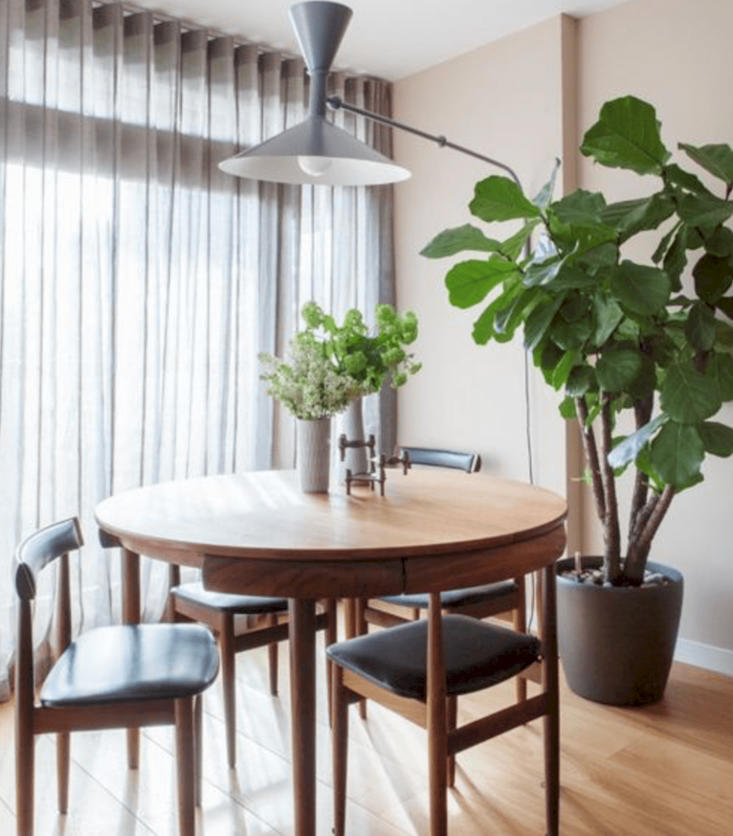 11 Awesome Dining Room Design With Bright Color Dining Table Ideas  - Dining Room Ideas With Plants