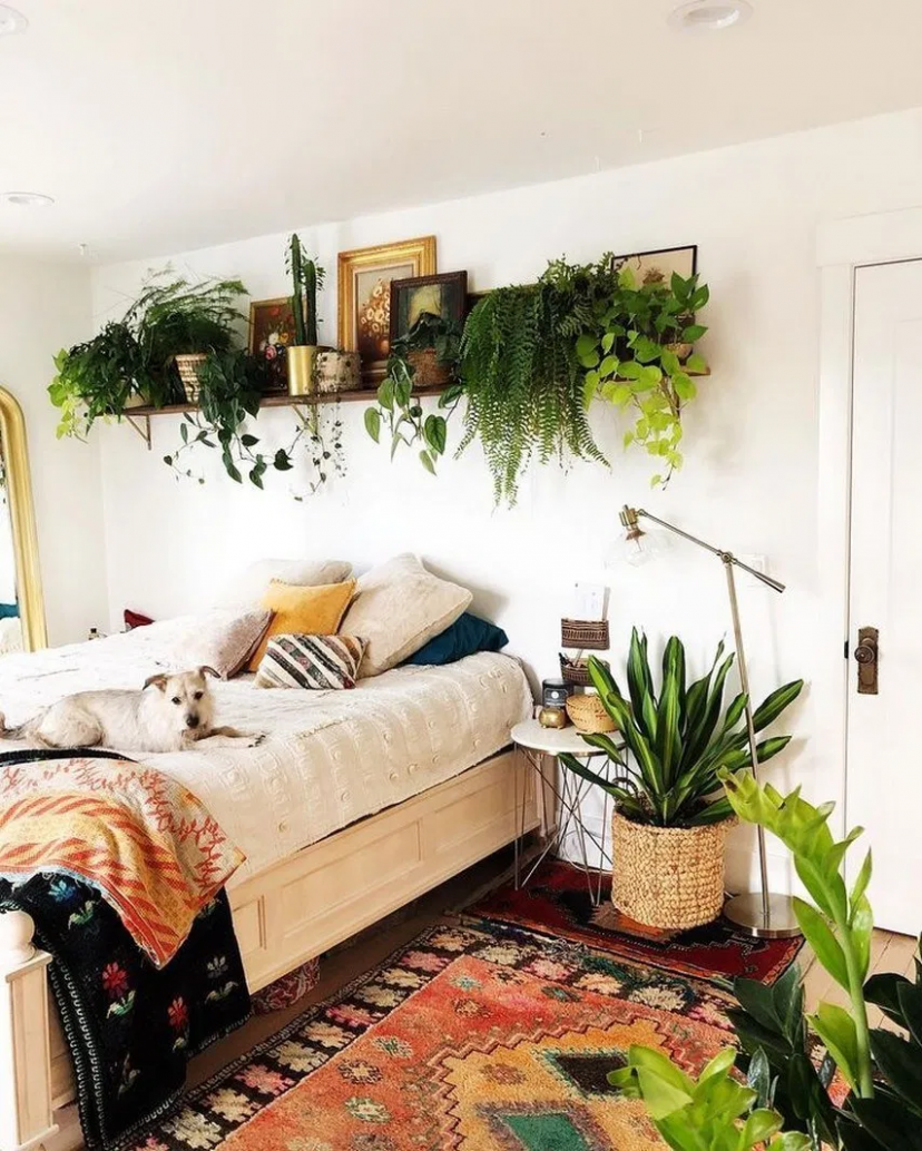 12 extraordinary bedroom decoration ideas with best plant 12  - Bedroom Ideas Plants