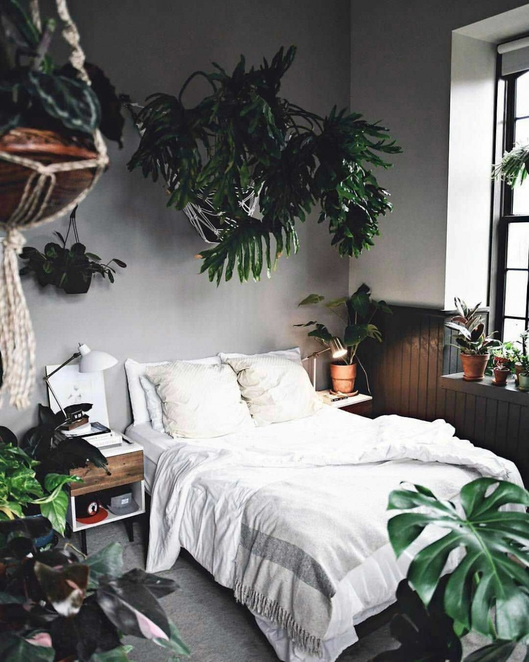 12 Incredible Apartment Bedroom Plants Ideas  Home decor bedroom  - Bedroom Ideas Plants