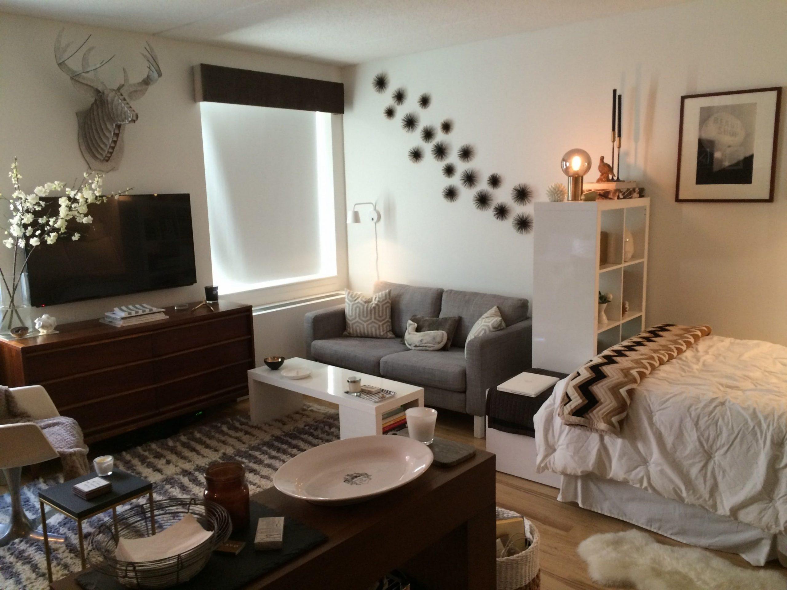 8 Studio Apartment Layouts That Just Plain Work  Apartment layout  - One Room Apartment Decor Ideas