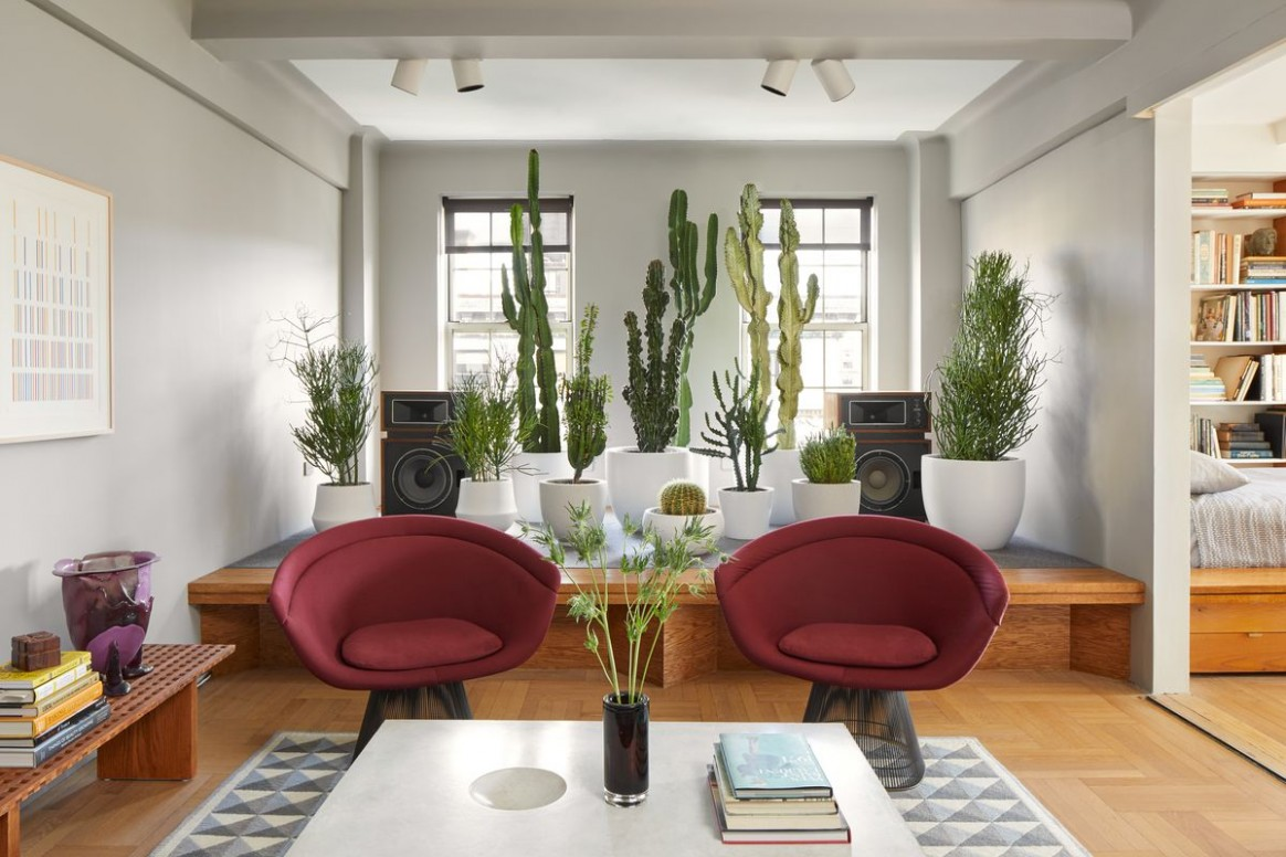 Plant decor ideas for the living room, bedroom, and more - Curbed - Dining Room Ideas With Plants