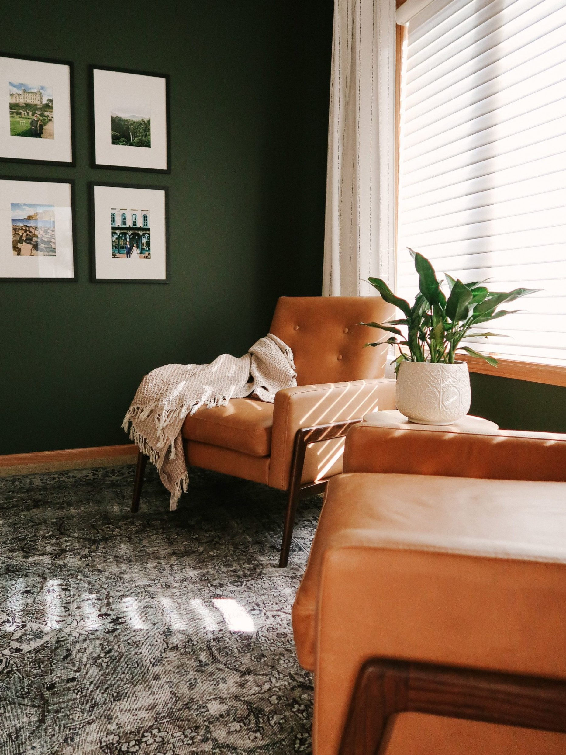 Tips for Decorating a Living Room with Dark, Bold Paint Color  - Bedroom Ideas Dark Green
