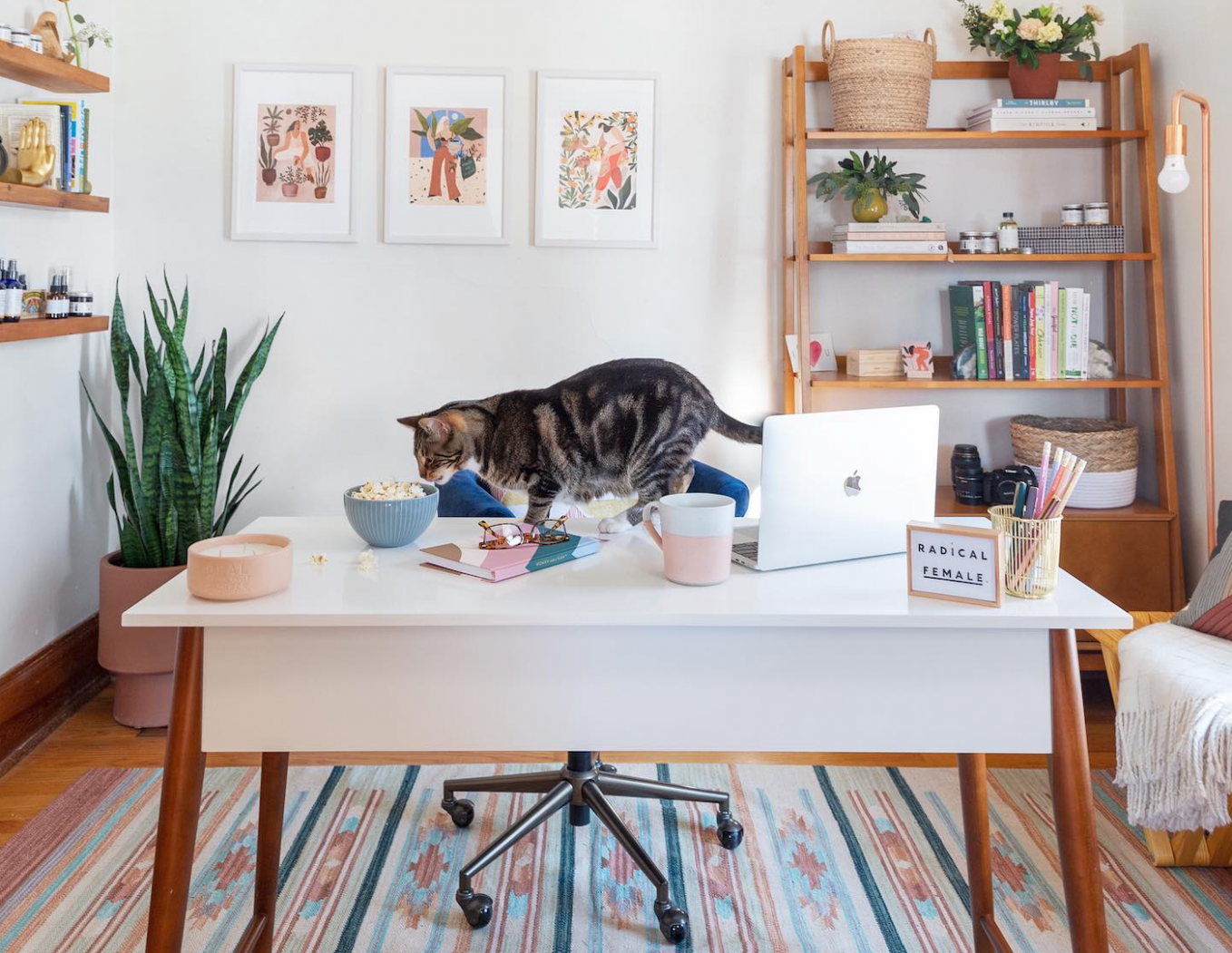 Best Home Office Decor Ideas for Remote Workers  StreetEasy - Home Office Accessories Ideas