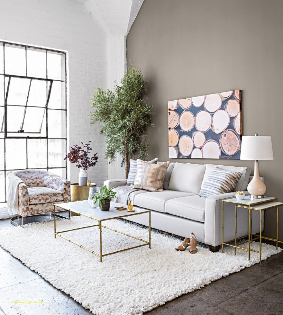 Lovely Apartment Living Room Decorating Ideas On A Budget Small  - Simple Apartment Decor Ideas