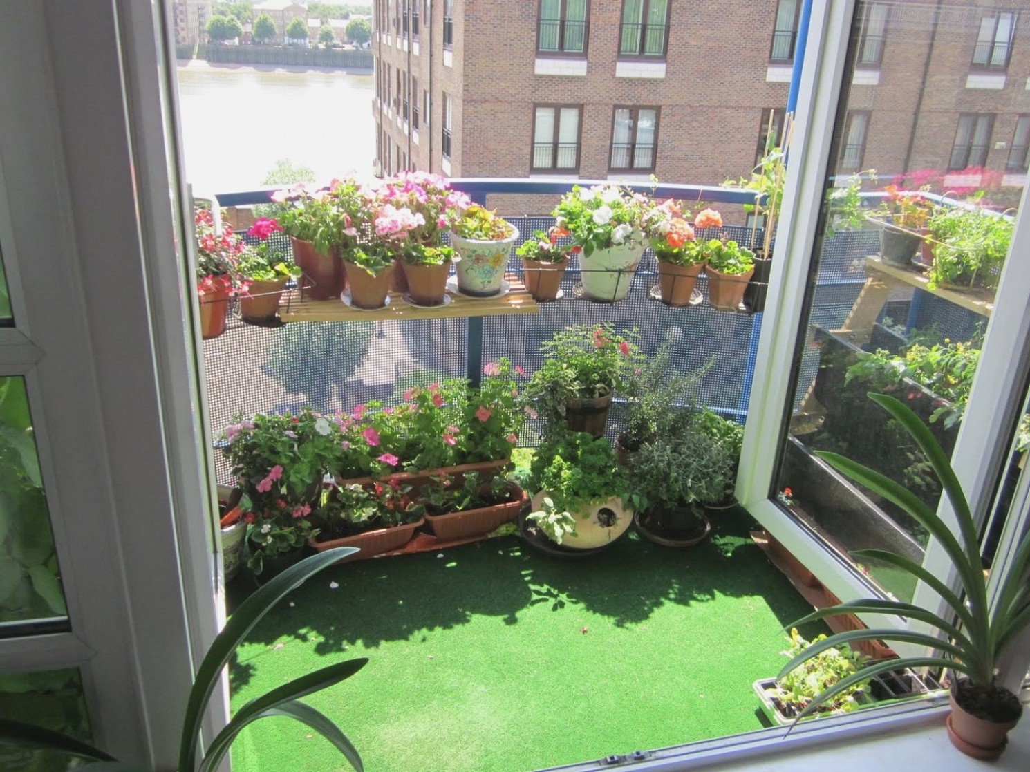 Urban Oasis: Balcony Gardens That Prove Green Is Always In Style - Apartment Yard Design